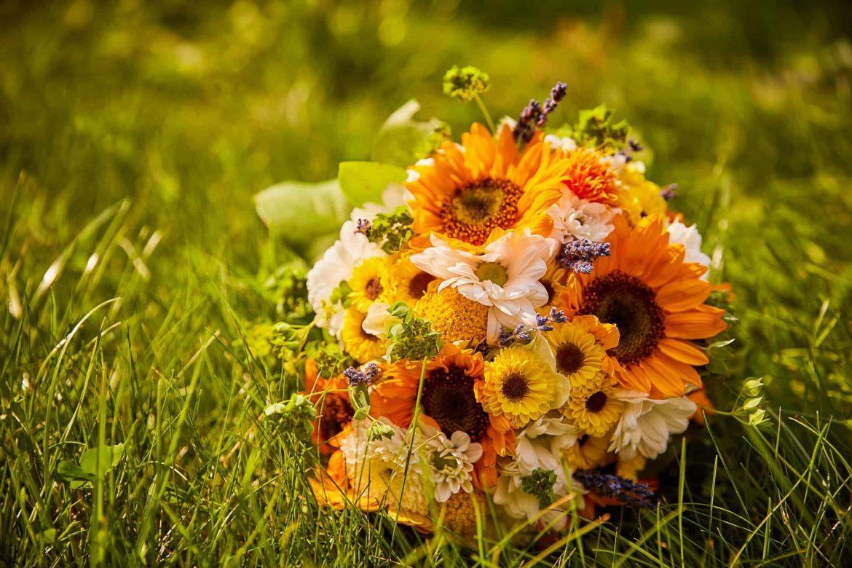 Wedding Day Photos From Brasov (46)