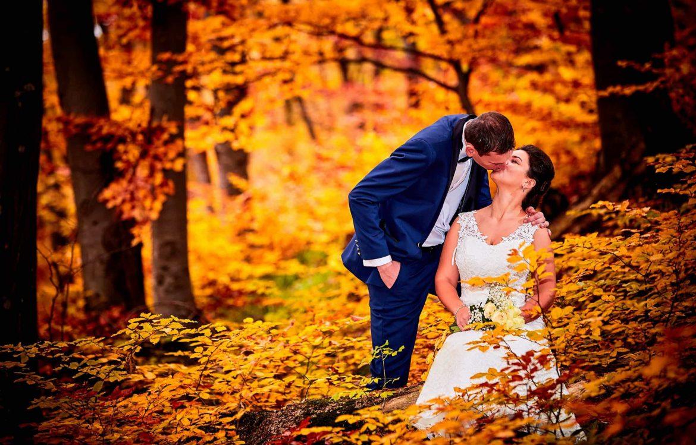 Love The Dress Toamna Brasov (21)