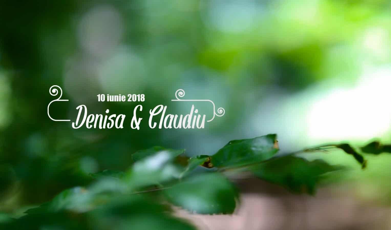Video nunta Conacul Heldsdorf