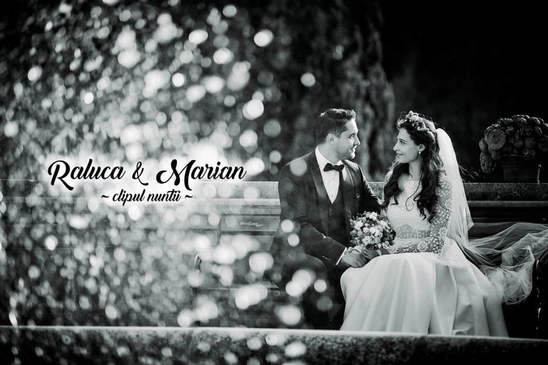 Video nunta Q Events Brasov